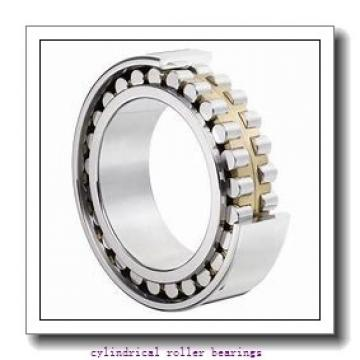 6.5 Inch | 165.1 Millimeter x 11 Inch | 279.4 Millimeter x 1.563 Inch | 39.7 Millimeter  CONSOLIDATED BEARING RLS-24 1/2  Cylindrical Roller Bearings