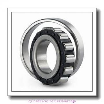 0.787 Inch | 20 Millimeter x 1.85 Inch | 47 Millimeter x 0.551 Inch | 14 Millimeter  CONSOLIDATED BEARING NU-204E C/4  Cylindrical Roller Bearings