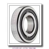 1.772 Inch | 45 Millimeter x 3.937 Inch | 100 Millimeter x 0.984 Inch | 25 Millimeter  CONSOLIDATED BEARING N-309 M  Cylindrical Roller Bearings