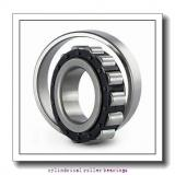 1.772 Inch | 45 Millimeter x 3.937 Inch | 100 Millimeter x 0.984 Inch | 25 Millimeter  CONSOLIDATED BEARING N-309  Cylindrical Roller Bearings